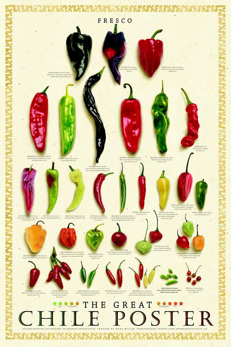 Fresh Chile Peppers Poster – White Background