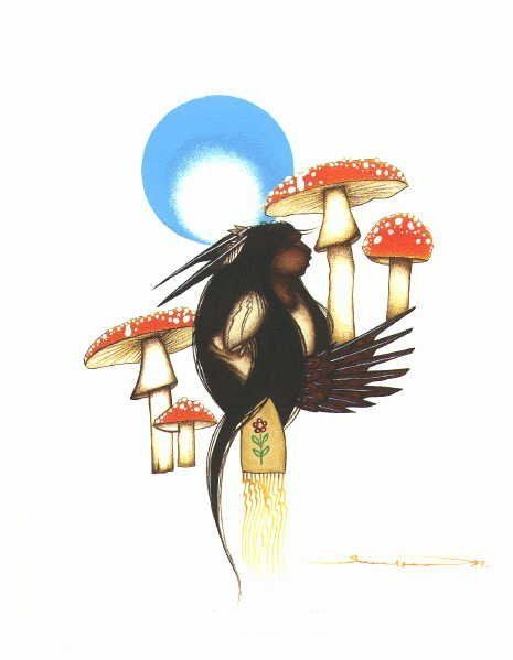 POWER OF FLIGHT – AMANITA MUSHROOMS